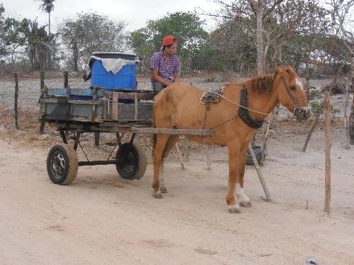 Transporte de longe